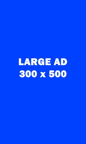 Large Ad 300x500