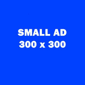Small Ad 300x300