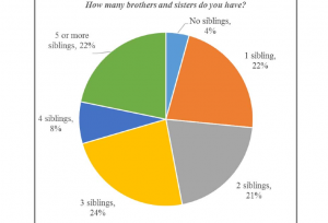 From the USCCB survey