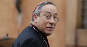 "Cardinal Oscar Rodríguez Maradiaga: ""The ideology surrounding environmental issues is too tied to a capitalism that doesn't want to stop ruining the environment because they don't want to give up their profits."" (poltico.com/AP Photo/Gregorio Borgia, File)"