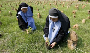 Catholic nuns plant trees in a field, symbolizing a deforested area, during a program marking World Environment Day in Manila, Philippines, June 5. (CNS photo/Romeo Ranoco, Reuters) (June 5, 2007)