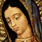 Annual LA archdiocesan Our Lady of Guadalupe pilgrimage under way