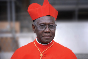 Cardinal Sarah (photo from November 6 Catholic World report article)