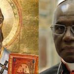 Cardinal Sarah's synod
