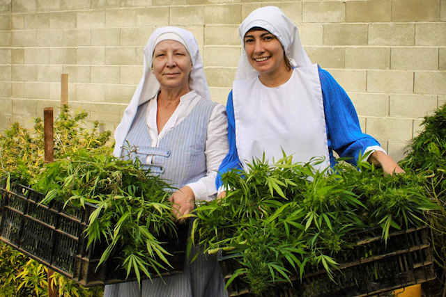 """Sisters of the Valley"" (photo from Aleteia article)"