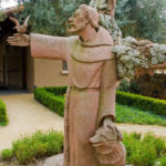 "Was St. Francis a ""tree-hugger""?"