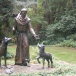 Where to get your animals blessed in Oakland diocese