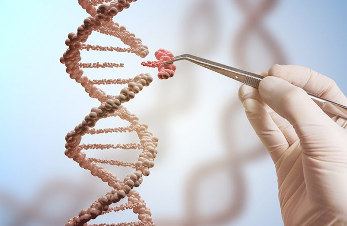 bio ethics and the controversy of genetic engineering